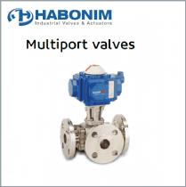 Multiport